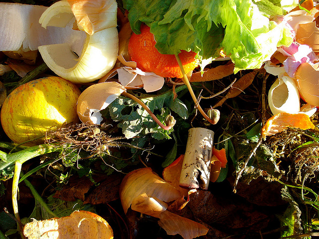 Environmental benefits of composting craft organic for Plante 94 pourcent