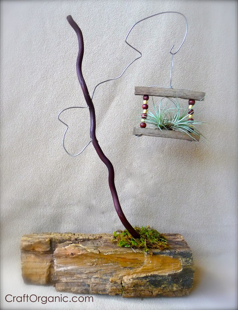 Air Plant Projects From Scrap Materials