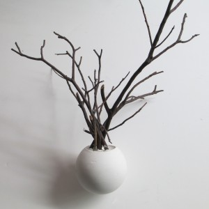 Tillandsia Tree with Sphere Base