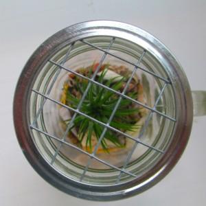 Mason Jar Terrarium Mug